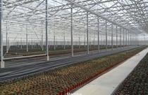 Agricultura - usos de las planchas de policarbonato | ALCRISTAL C.A.
