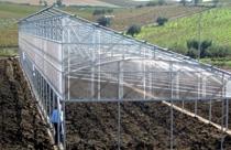 Invernaderos | Agricultura - usos de las planchas de policarbonato | ALCRISTAL C.A.